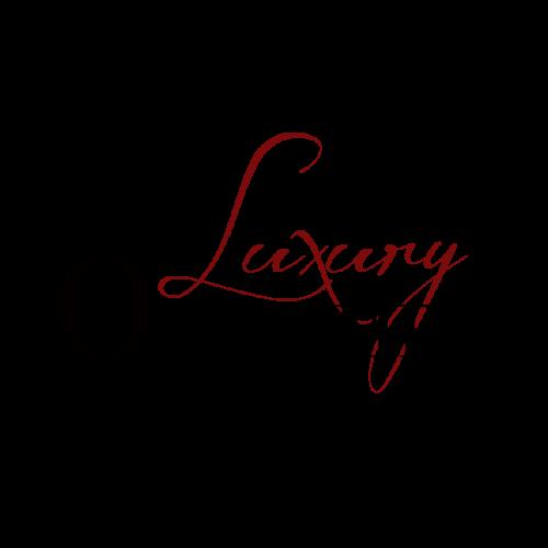 Logo Design für Autovermietung. Webdesign Mainwebsite
